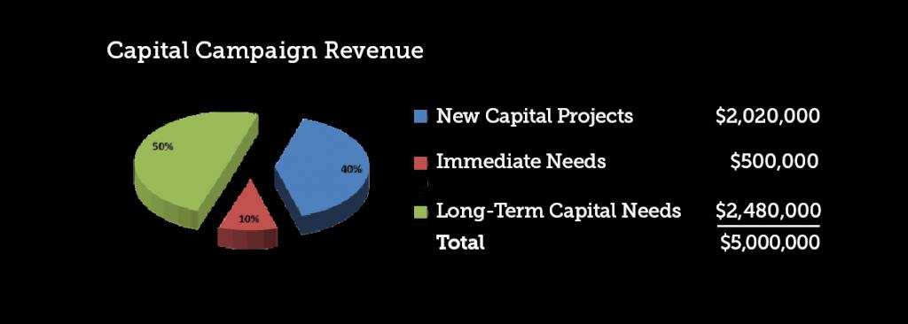 Capital-campaign-revenues-01